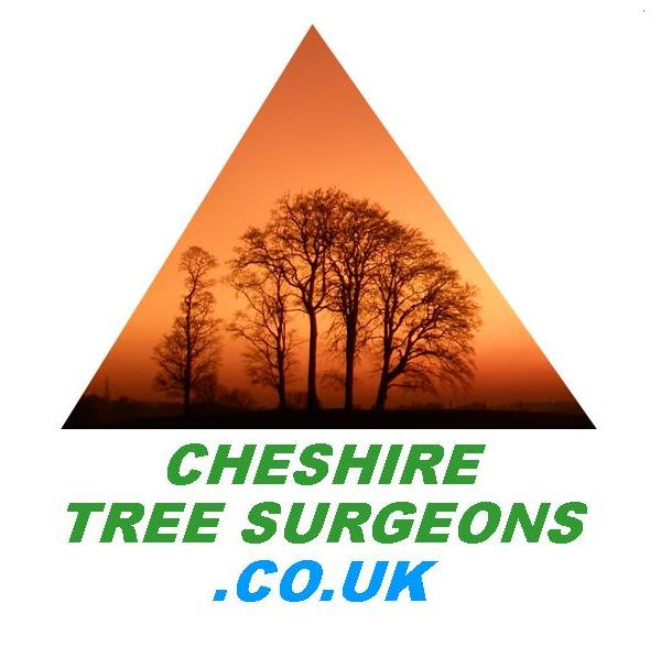 Arbornauts: Cheshire Tree Surgeons